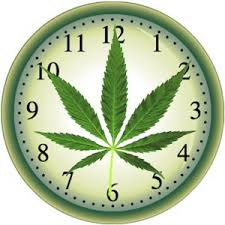 Smaltire la cannabis, quanto tempo ci vuole